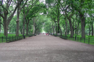 Central Park: 10 lieux à voir absolument
